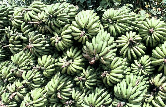 2014-02-05-bananas.jpg