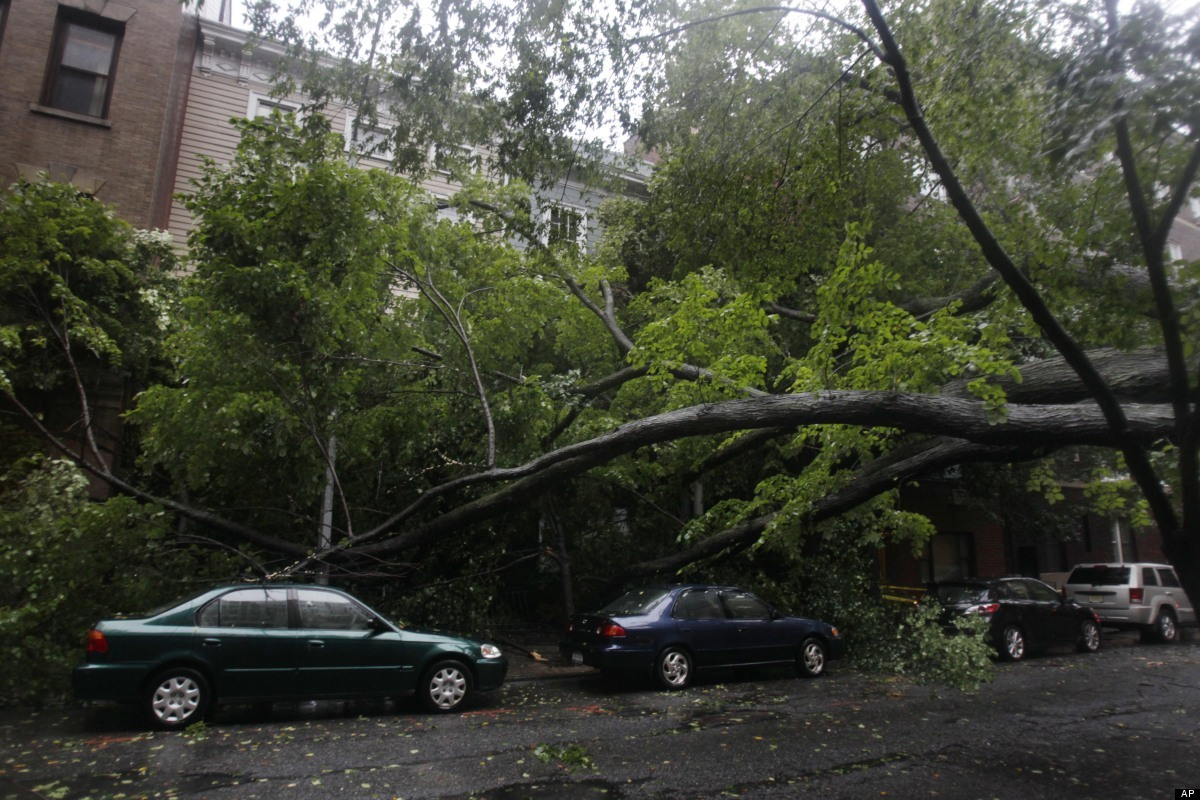 A large, fallen tree blocks a road while it rest on some cars in the Brooklyn borough of New York, Sunday, Aug. 28, 2011. Hur