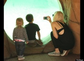 Gwen Stefani takes her boys, Kingston and Zuma, to the London Zoo. (FilmMagic)