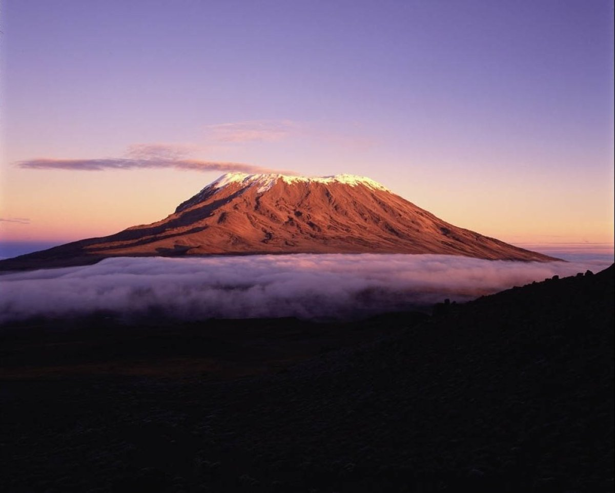 "<a href=""http://www.blacktomato.co.uk/867/the-ultimate-kenya-safari/"" target=""_hplink"">Mount KIlimanjaro</a> is a perennially"