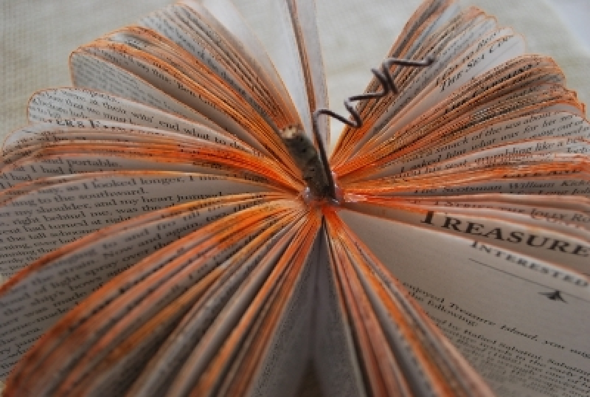 <strong>You'll need:</strong>