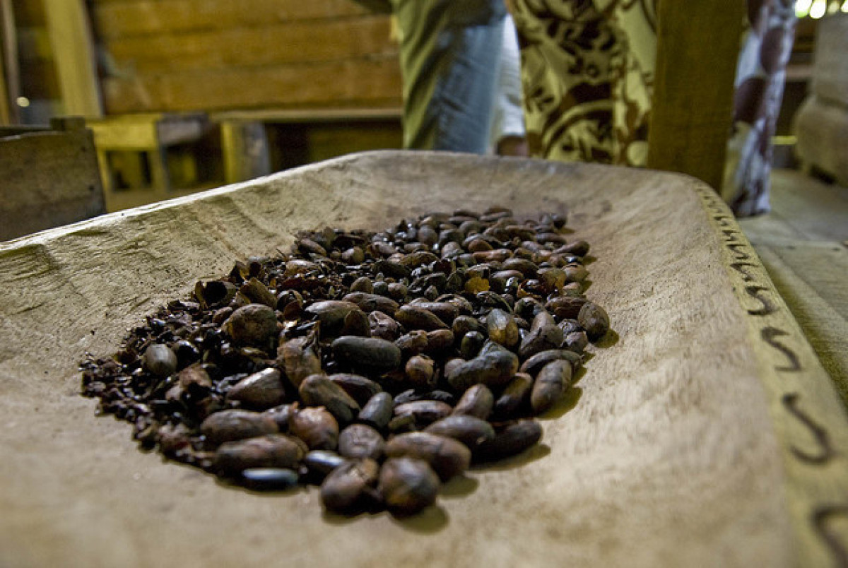 Cocoa beans are harvested mainly in developing countries where the political situation can be shaky, to say the least. The Iv