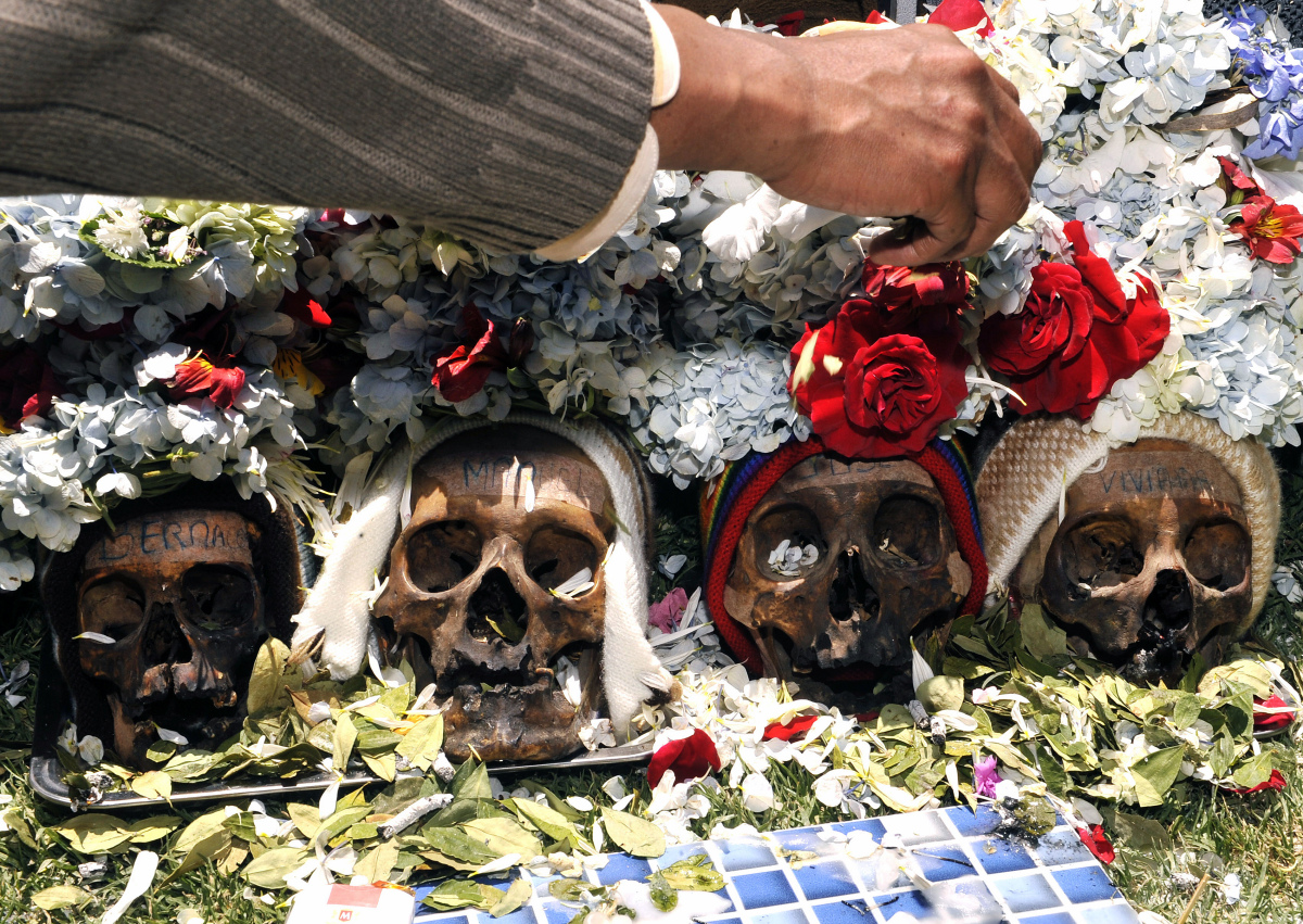 A man places flowers on 'ñatitas' (snub nose -an affectionate nickname for human skulls), on November 8, 2011 at the general