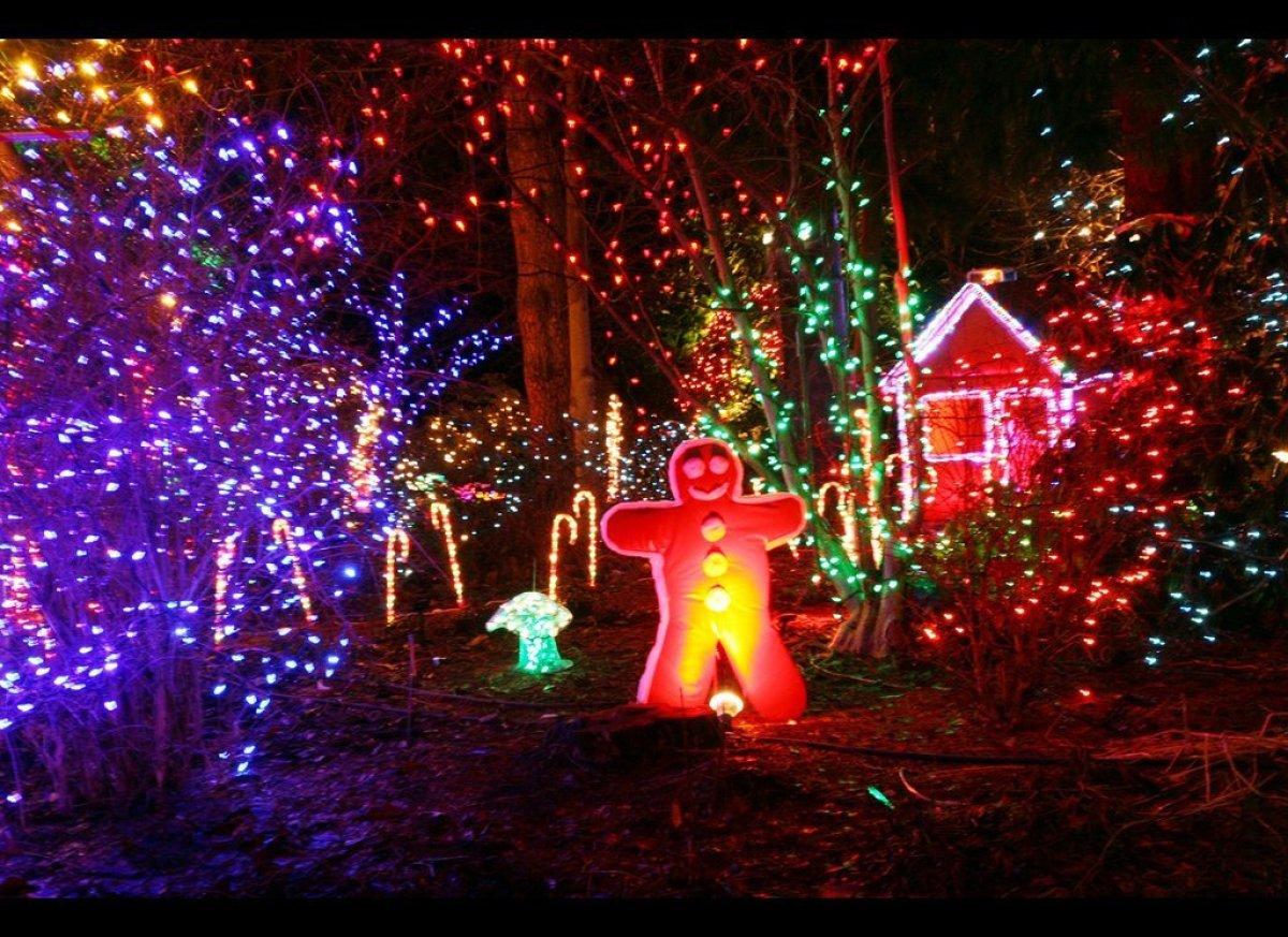 Festival of lights at vancouver 39 s vandusen botanical garden photos huffpost for Botanical garden christmas lights