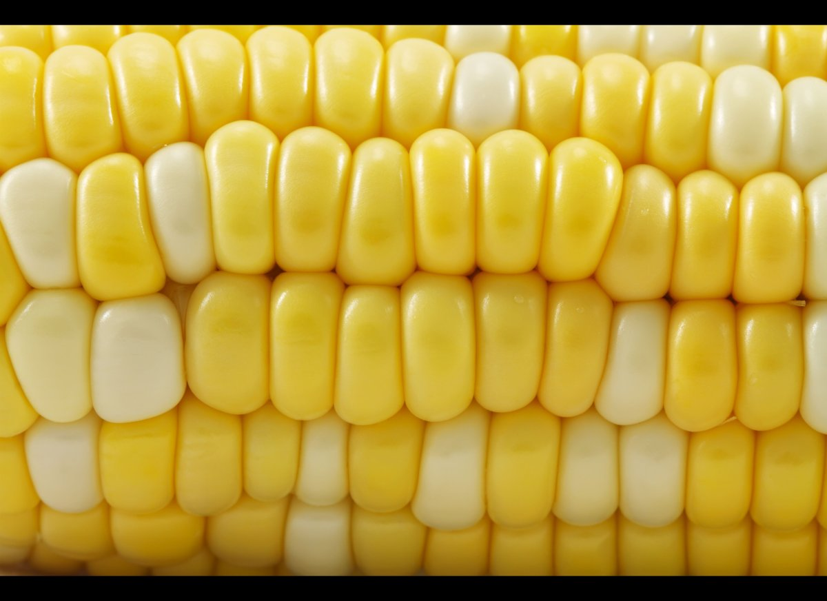We're most familiar with the sunny, yellow version, but corn comes in a rainbow of colors -- from pink to blue to black -- ea