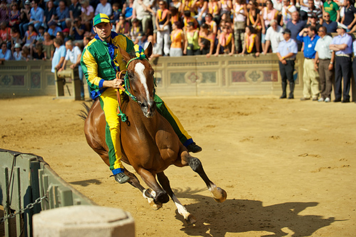 The Tuscan town of Siena has been holding its Palio since medieval times. Twice a year, ten horses with bareback riders race
