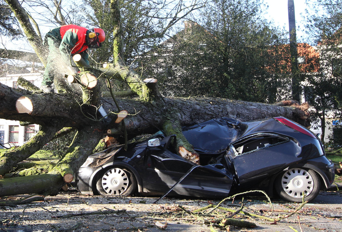 <em>From AP:</em> A firefighter cuts a tree after if fell on a car in Ghent, 50 km (31 miles) west of Brussels, Belgium, Thur