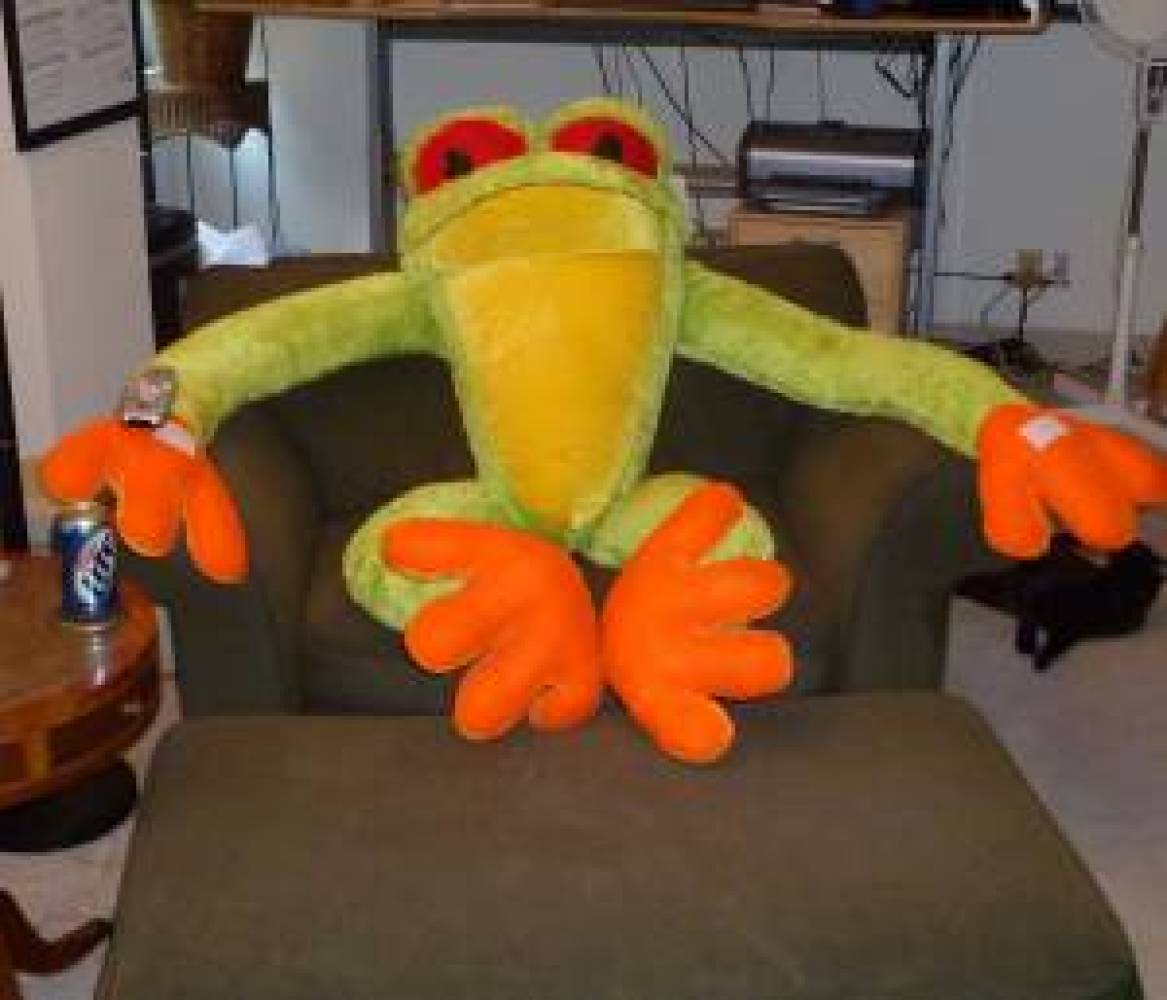 """If you thought this was a mere stuffed animal, you were apparently wrong. According to seller, """"he likes watching tv and the"""