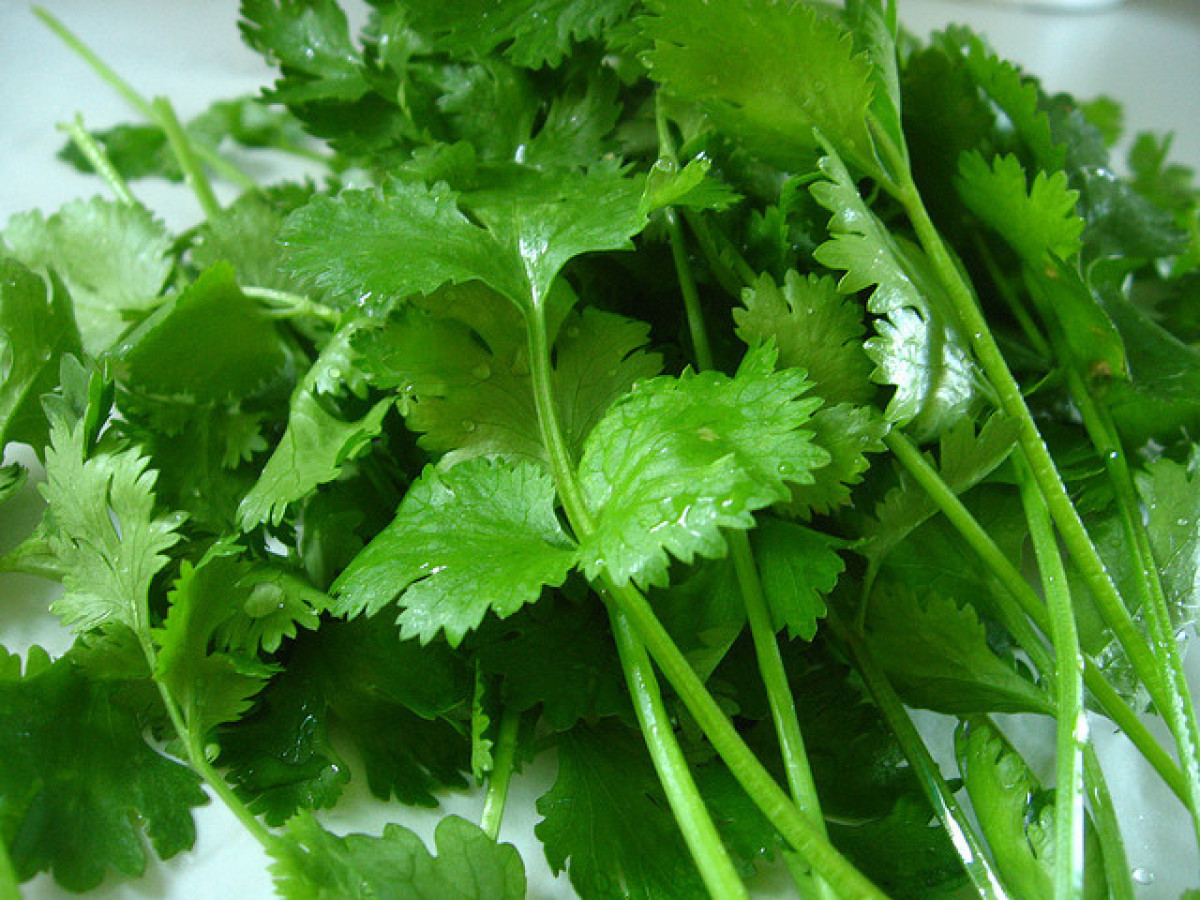 "Cilantro is probably the most high-profile polarizing food. The 2010 Harold McGee article, ""<a href=""http://www.nytimes.com/2"