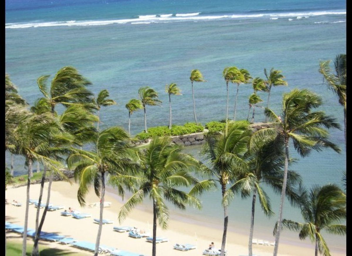 Kissing Point is aptly named for the numerous couples who escape to the Kahala for a little romance.