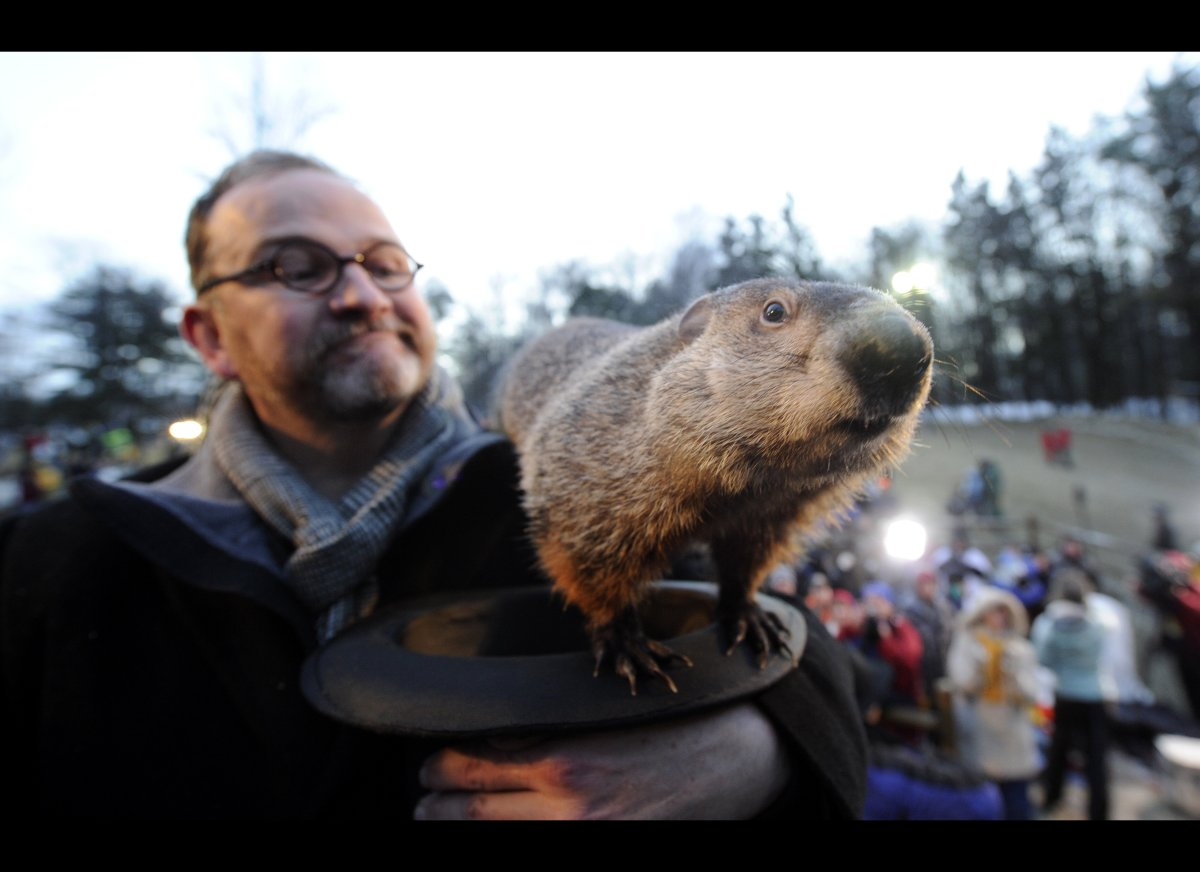 Punxsutawney, PA: Phil is obviously the most well-known groundhog weatherman, and we're pretty sure his fame has gone to his