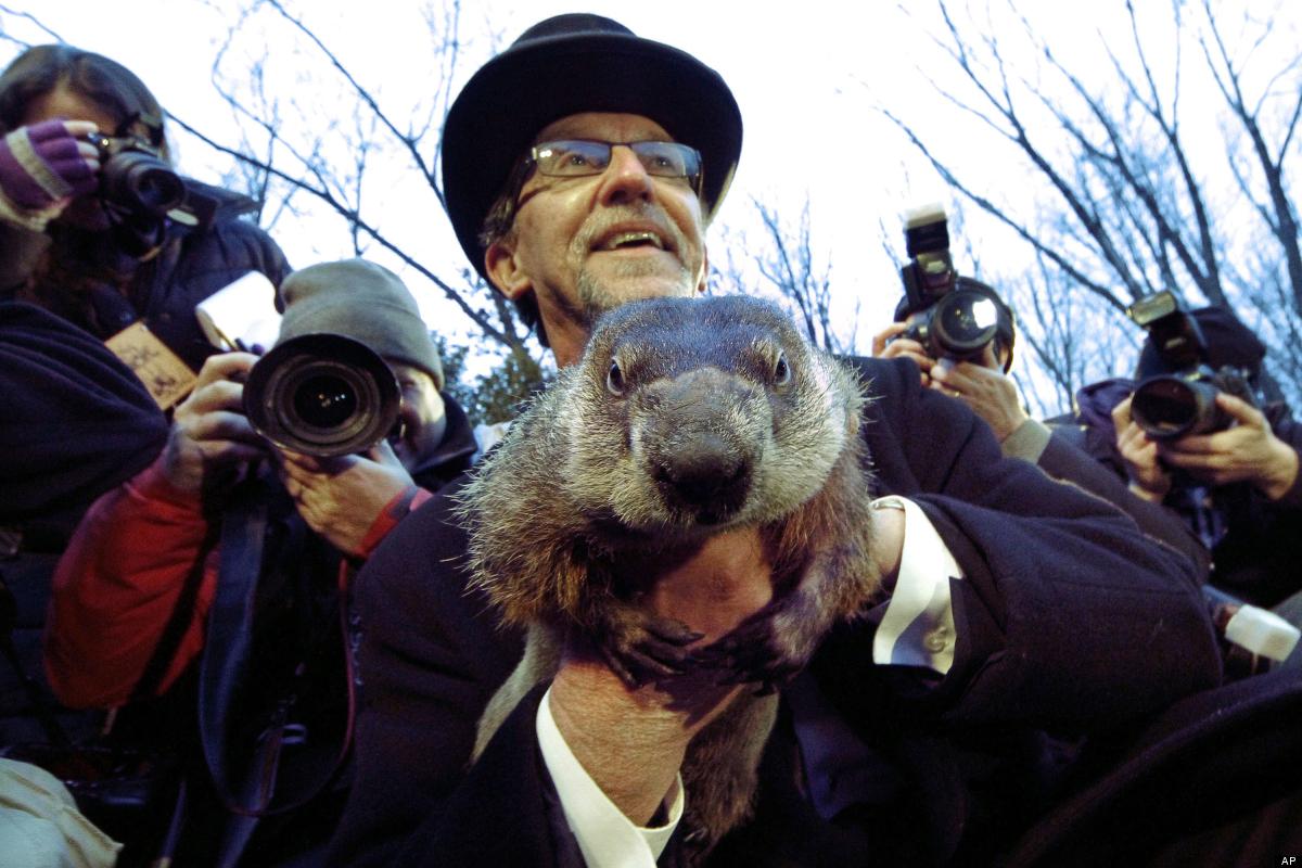 Groundhog Club handler Ron Ploucha holds Punxsutawney Phil, the weather prognosticating groundhog, during the 126th celebrati
