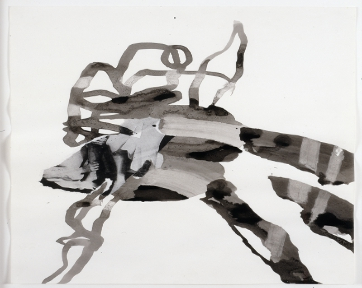 Charline von Heyl, Untitled, 2003. Photocopy, collage and ink on paper. 15 works, each 24 x 19 inches. The Museum of Modern A