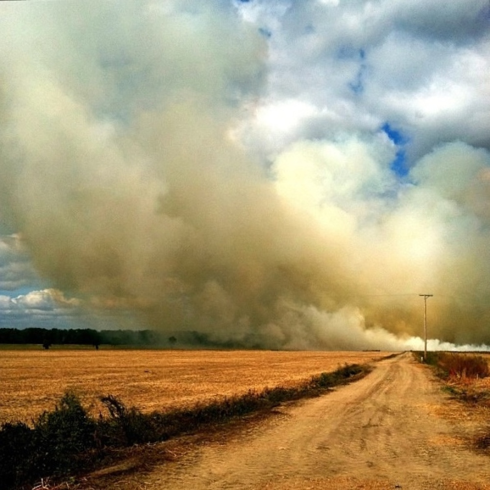 This picture is the photo I talked about in my question/answers. Field burning in Mississippi. It was a little adrenaline rus