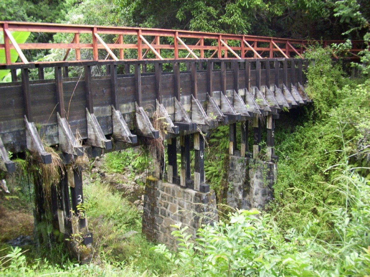 This bridge marks the beginning of the Kohala Ditch Adventure in North Kohala on the Island of Hawaii. The bridge overlooks a