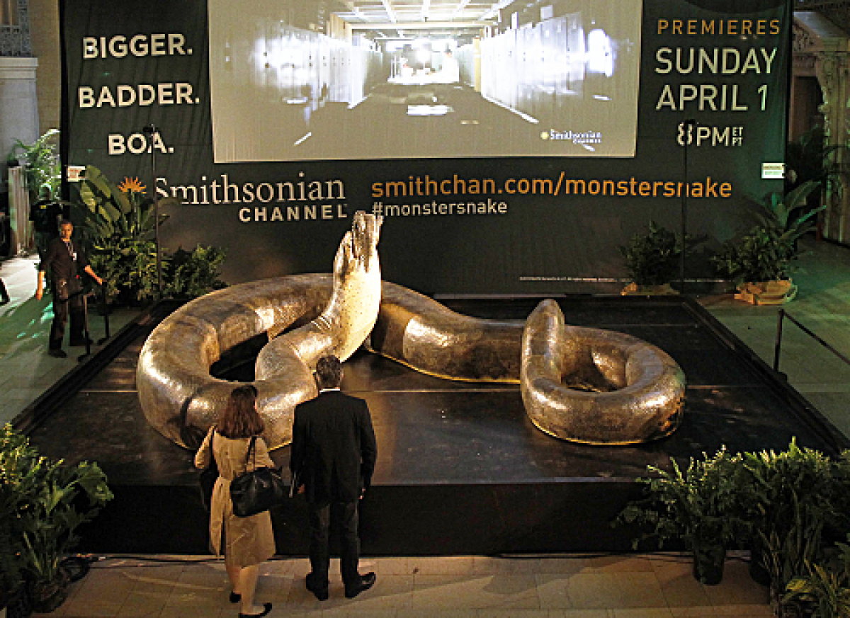 Smithsonian Channel unveiled a scientifically accurate life-size replica of Titanoboa, the biggest snake to have ever roamed