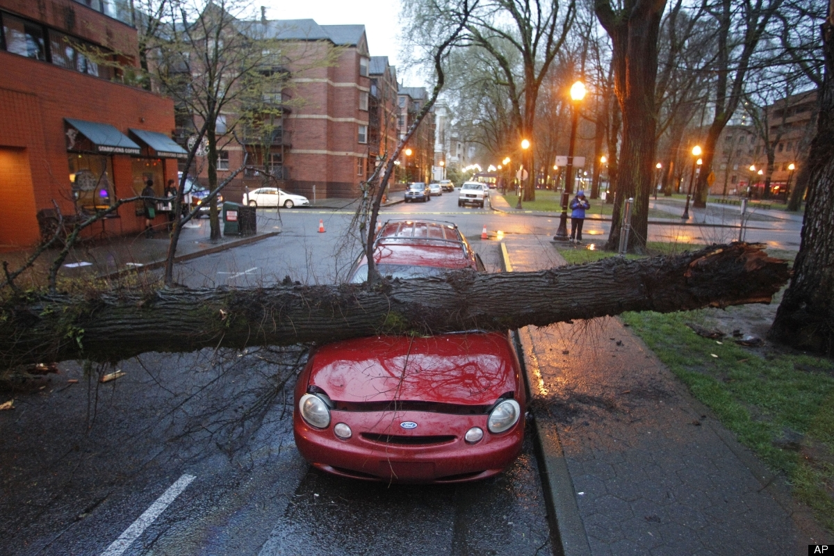 <em>From AP:</em> A large tree crushes a parked car outside an apartment building early Friday, March 30, 2012, in Portland,