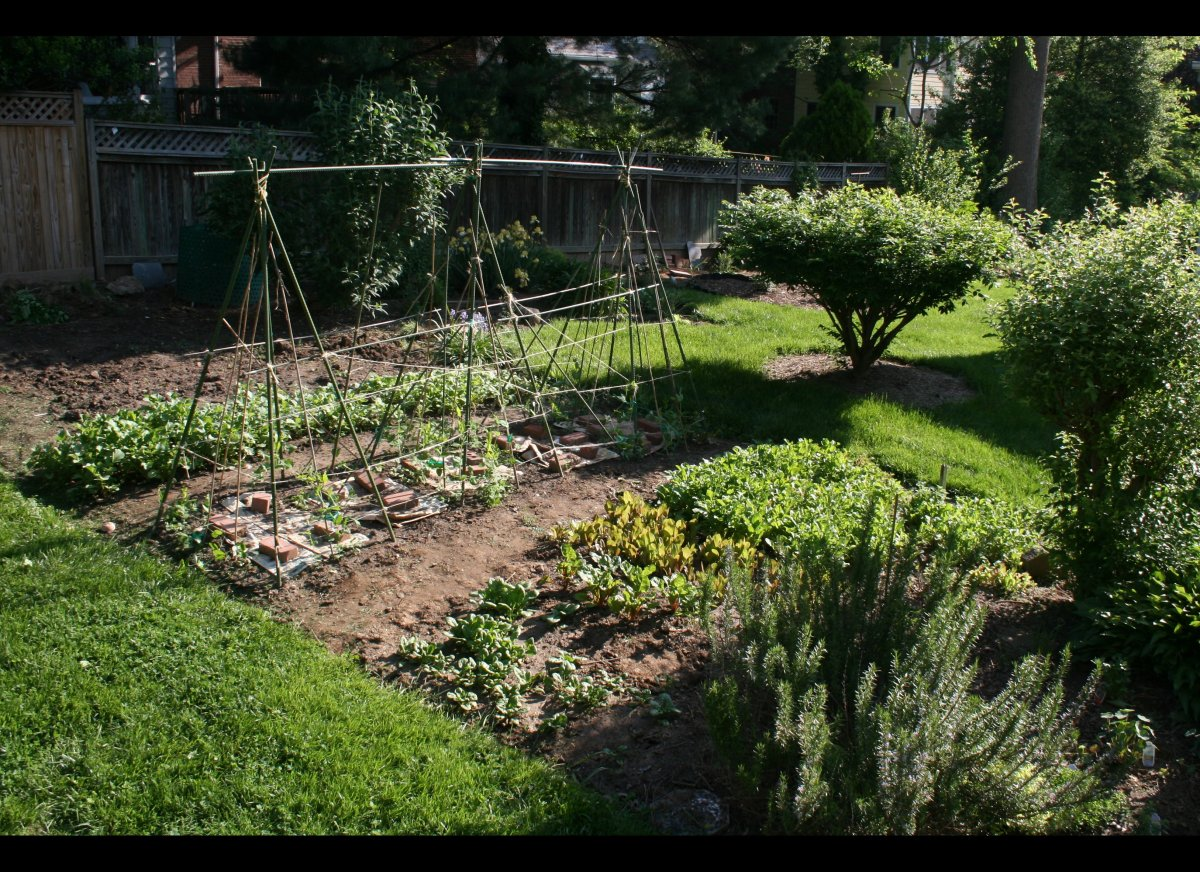 "Designing your garden to provide <a href=""http://www.networx.com/article/what-crops-to-plant-now-for-fall-and-win"" target=""_h"