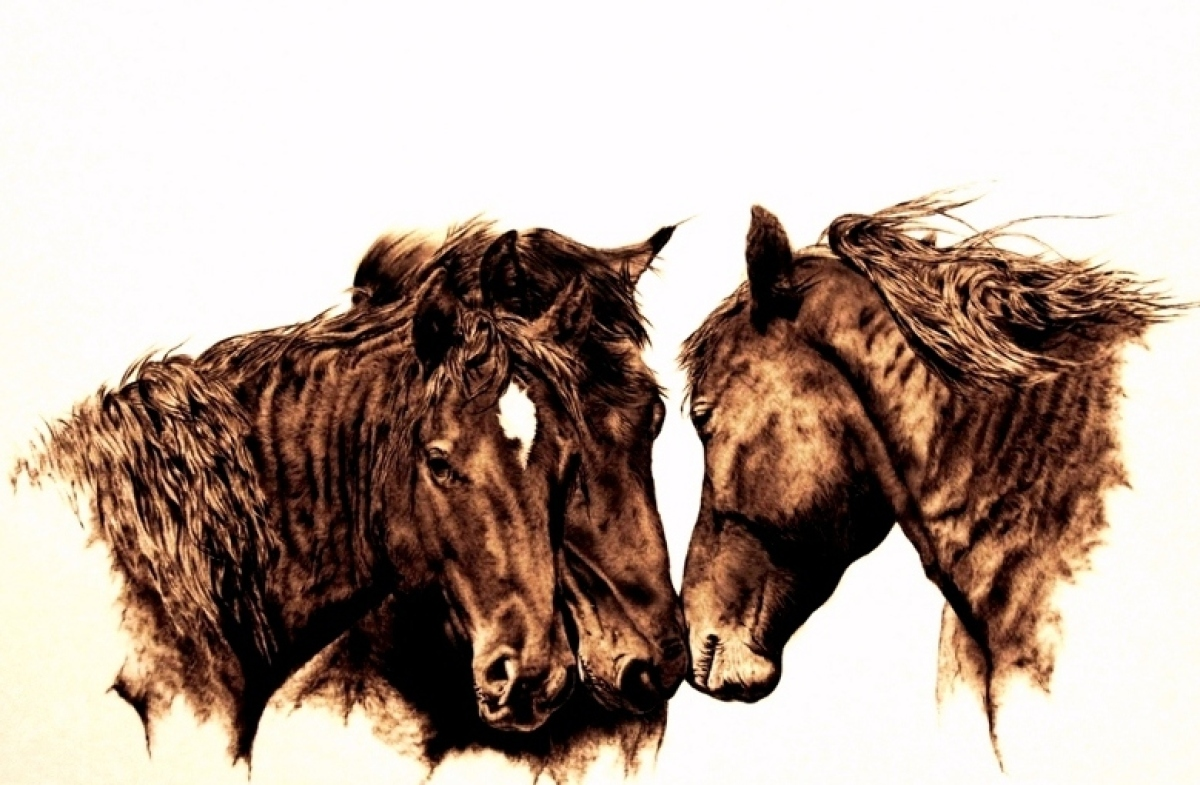 """Julie Bender, """"Private Conversation"""" ©, Pyrography on paper, 15x23, 2012, Collection of the artist"""