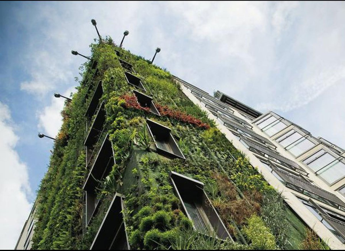 "The spectacular Living Wall at the Athenaeum Hotel in London was created by <a href=""http://www.verticalgardenpatrickblanc.co"