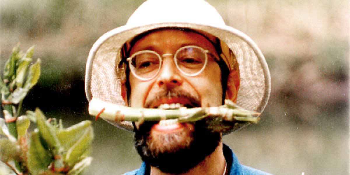 """<a href=""""http://www.obscuraday.com/events/urban-foraging-in-central-park-steve-brill"""" target=""""_hplink"""">Hunt for edible wild s"""