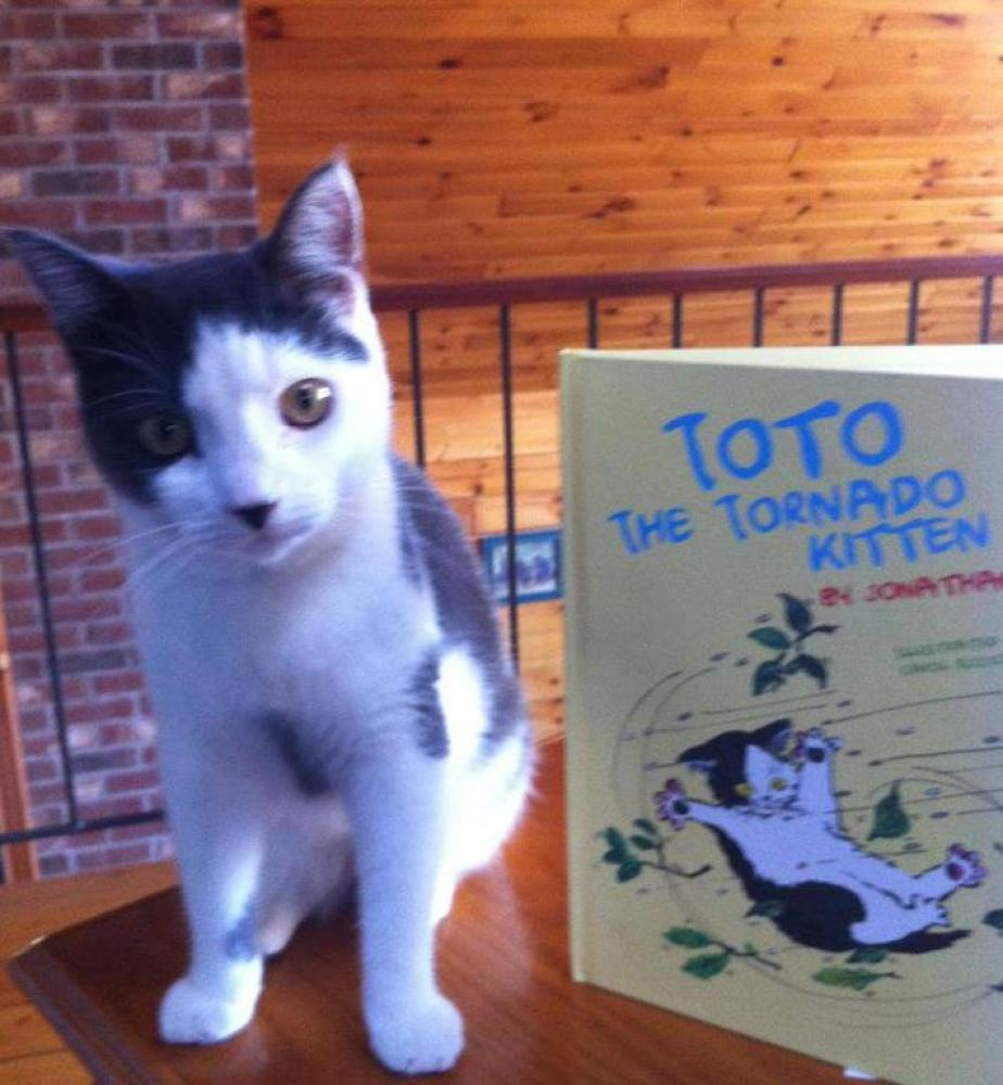 Toto and the first copy of his book.