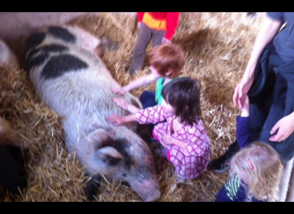 My kids with Pig.