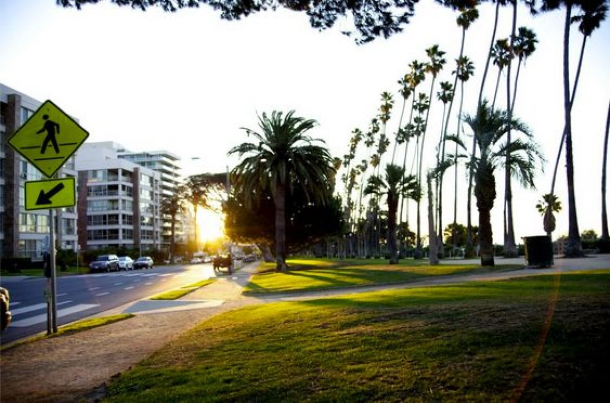 The Santa Monica Bluffs feature an unbeatable view of the Pacific Ocean and numerous places to host a picnic. Built-in tables