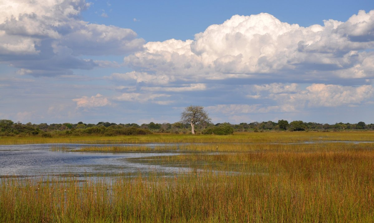 Just five minutes from the airstrip en-route to the lodge, we happened across this gorgeous little floodplain which spilled a