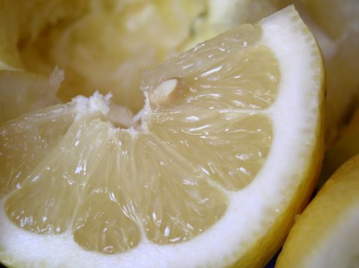 """The astringent citrus first """"stung"""" on the participant's dry scalp, which wasn't the best sign. Over the course of two weeks,"""