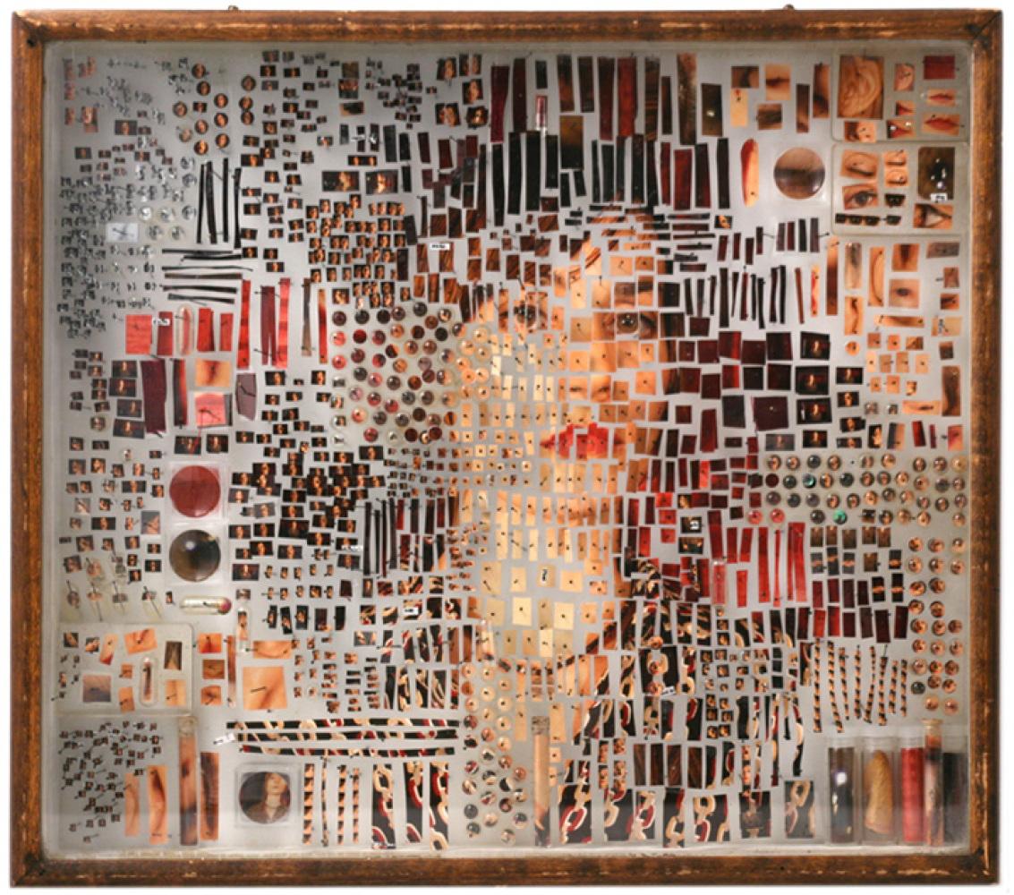 Michael Mapes, FEMALE SPECIMEN No.07, 2006, (photographic prints, fabric samples, lipstick, fingerprints, glass vials, plasti