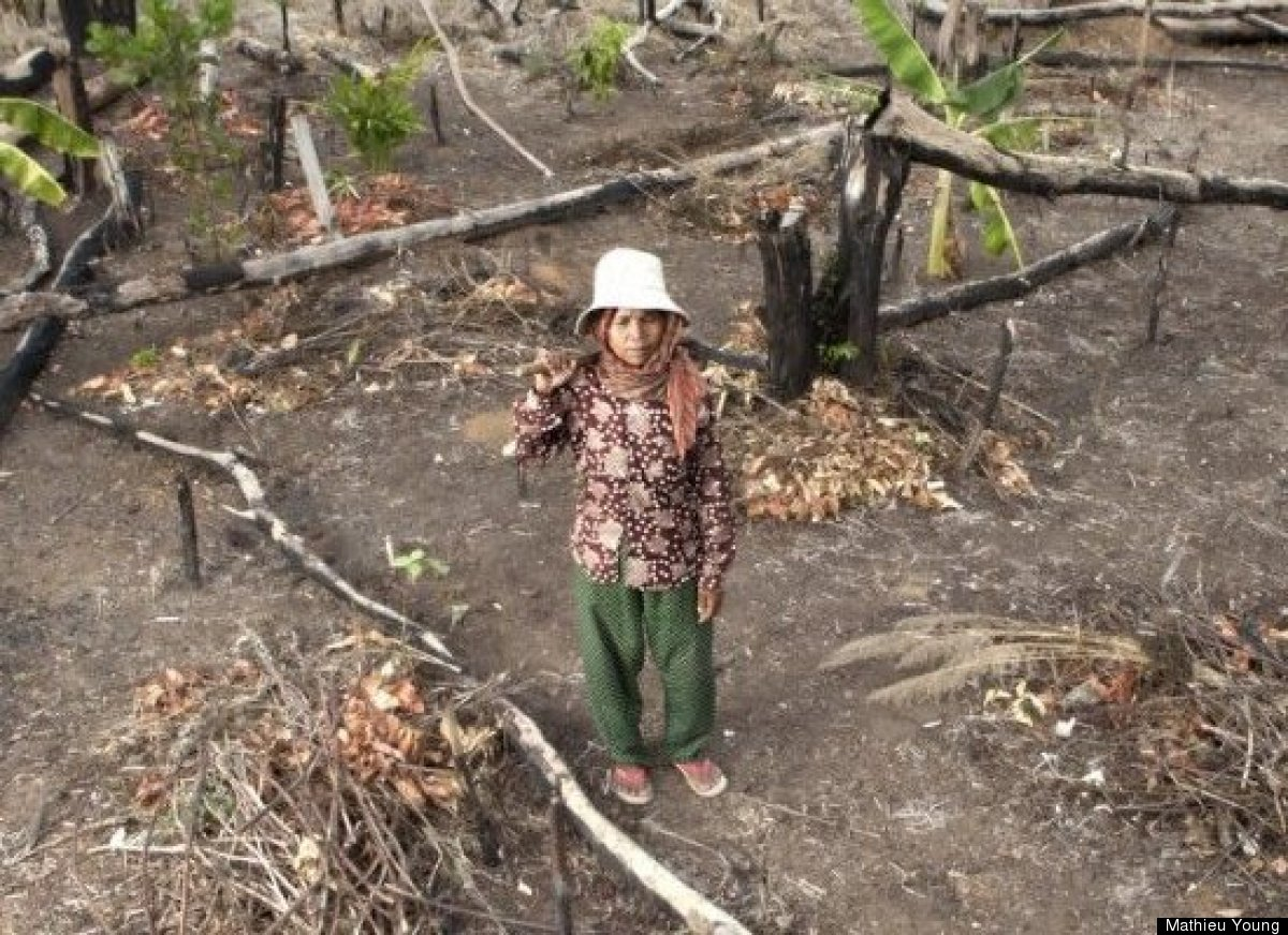 Sam Ren, 50, stands in an area of forest cleared for a cassava plantation near Morn Village in Prey Lang.