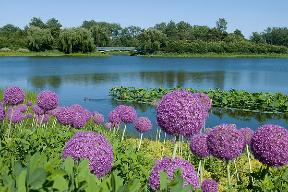 Delicieux The 10 Most Beautiful Botanical Gardens Across The United States (PHOTOS) |  HuffPost