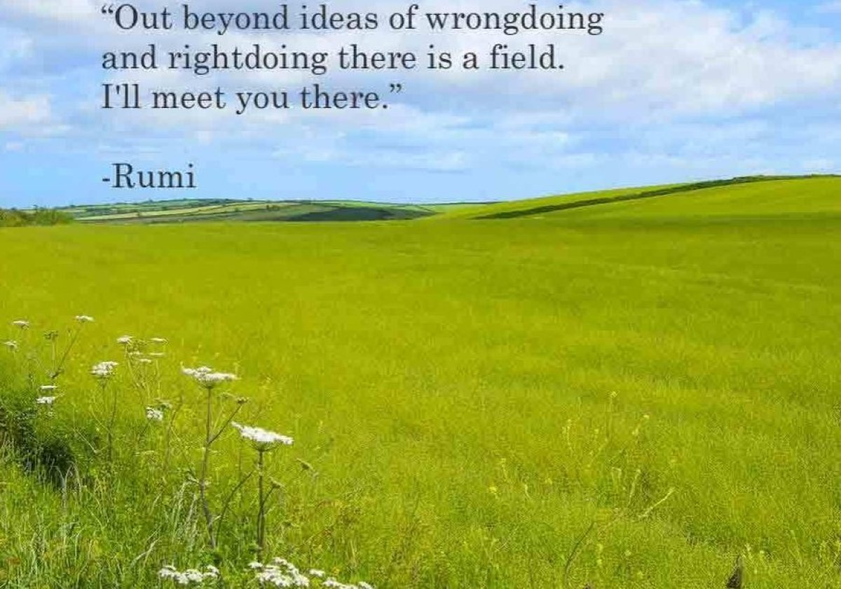 """""""Out beyond ideas of wrongdoing  and rightdoing there is a field. I'll meet you there.""""  -Rumi"""