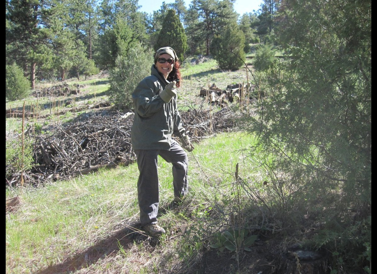 Defenders of Wildlife volunteers partnered with Boulder County Parks and Open Space to remove old barbed wire fencing from Be