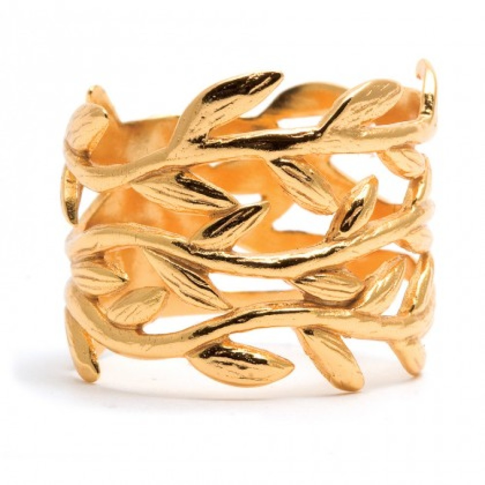 "<a href=""http://www.charmandchain.com/jewelry/rings/designers-a-z-designers-gorjana-gold-vine-ring"" target=""_hplink"">Charm &"