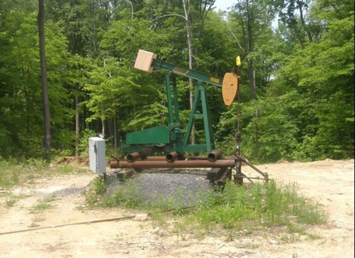 As we hiked through the Allegheny National Forest, we came across many stripper wells like the one pictured above.  According