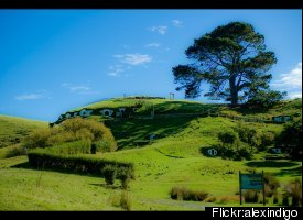 "Located in the picturesque <a href=""http://www.tourism.net.nz/region/waikato/"" target=""_hplink"">Waikato</a> countryside, you"