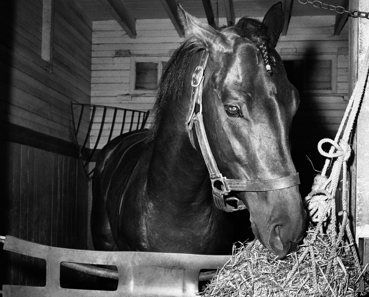 The Calumet Farm bay colt finished second to Cavan by 5 1/2 lengths after running the final quarter-mile with a broken bone i