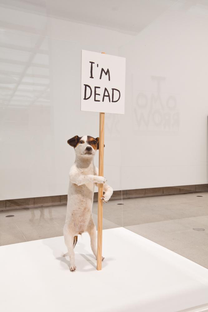 I'm Dead, 2007 Taxidermy, wood, acrylic paint © David Shrigley Photo: Alexander Newton