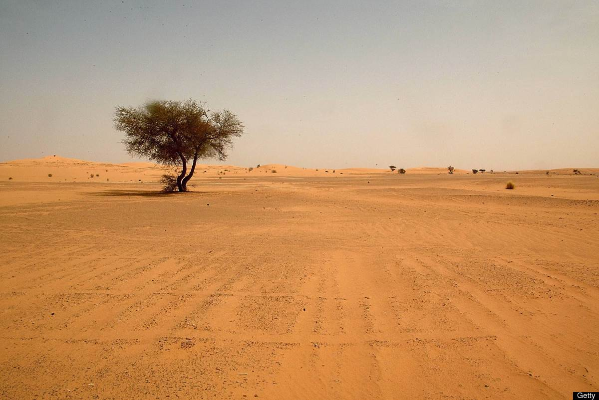 Photo: A landscape view dated May 2003 shows the Saharan desert in southern Algeria, near the city of Illizi. (HOCINE ZAOURAR