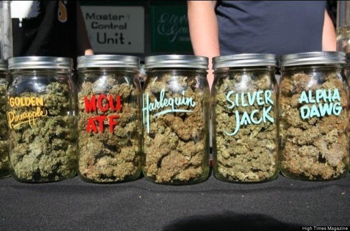Buds on display