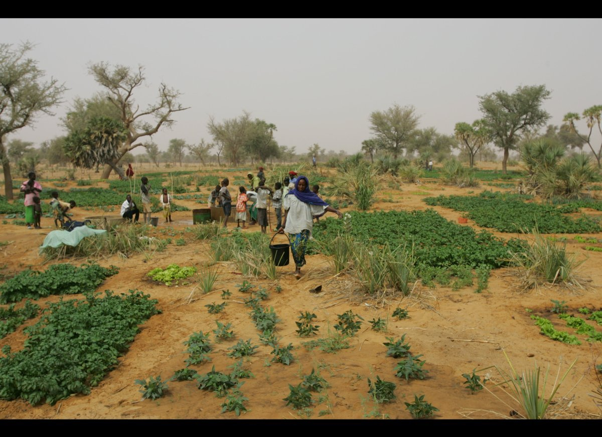 Climate change and encroaching desert are making droughts increasingly severe in this landlocked nation. Mercy Corps is train
