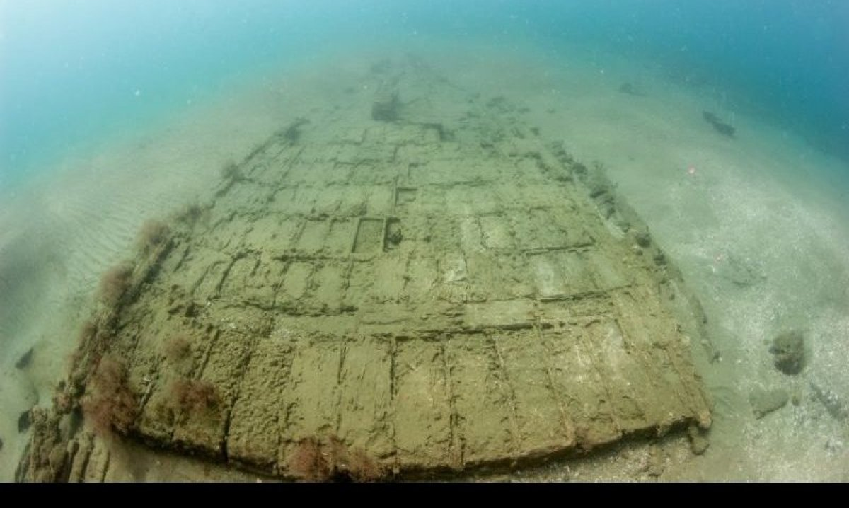 This is what a wooden ship that's been submerged for over 300 years looks like. It was potentially a part of Captain Henry Mo