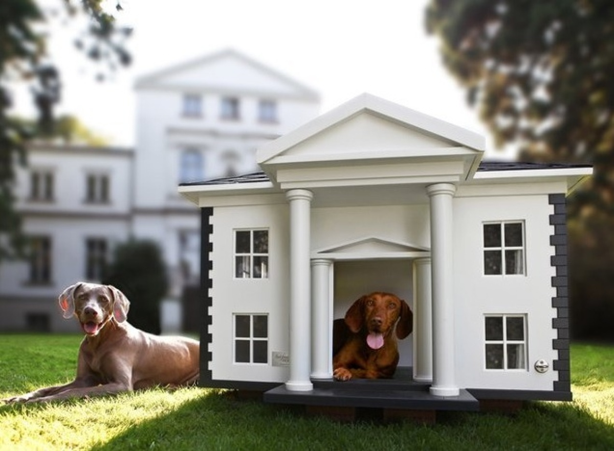 """Now your dogs can be in the 1 percent, too! Quick, someone start a Tumblr: """"Rich Dogs Of Instagram."""" #Wealth #mansion. ($7,2"""