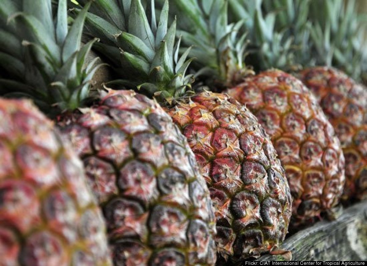 The first sign of a pineapple's ripeness is its color. It should be golden-brown, without much green color left at the base.