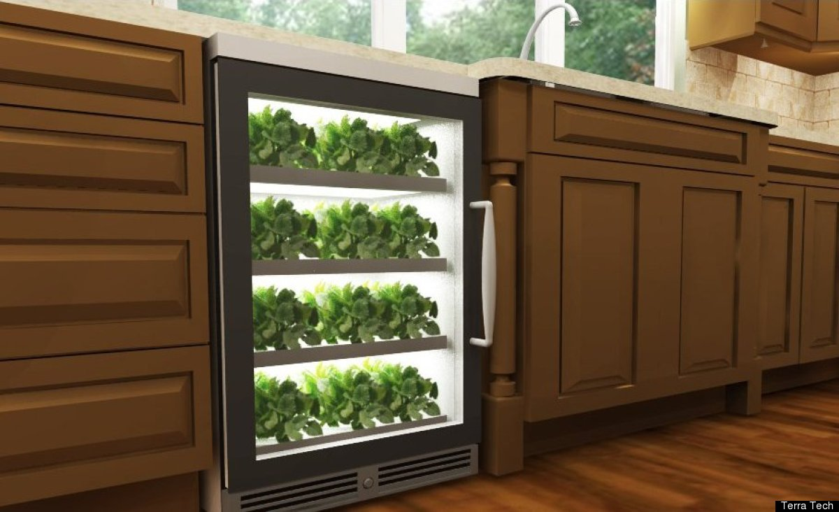 "Later this year, Terra Teach is launching the ""herbNgarden,"" an under-counter unit about the size of a dishwasher that aeropo"