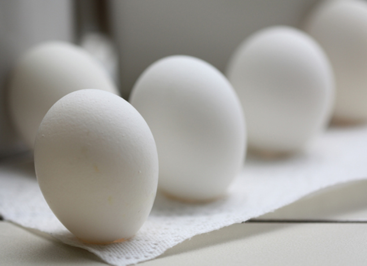 You could make some meringue, or you could use your excess egg whites for your kitchen burns. Some say that applying egg whit