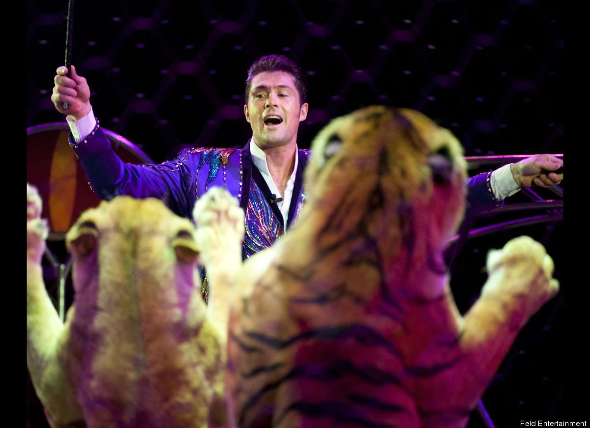 Alexander Lacey, the big cat trainer for Ringling Brothers And Barnum & Bailey Circus, is the second generation of animal tra