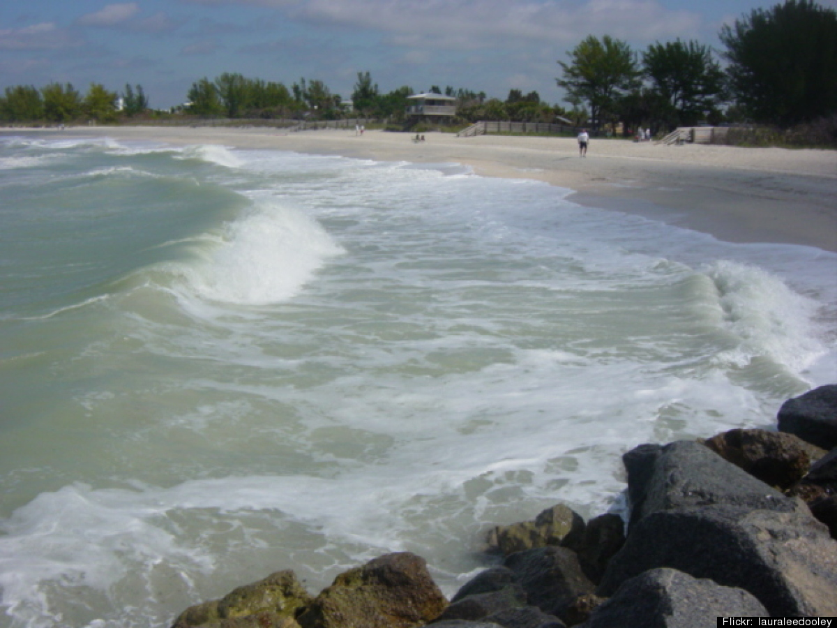 Venice, Florida -- the world's third most famous Venice -- got its name after locals noticed the bizarrely high numbers of fo